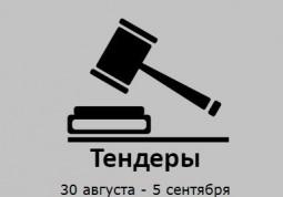 ТЕНДЕРЫ ПО ШТОРАМ. 30 августа - 5 сентября