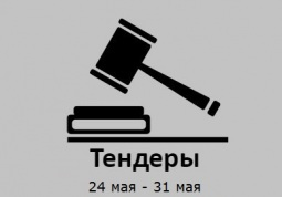 ТЕНДЕРЫ ПО ШТОРАМ. 24 мая - 30 мая