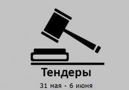ТЕНДЕРЫ ПО ШТОРАМ. 31 мая - 6 июня