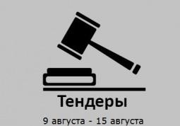 ТЕНДЕРЫ ПО ШТОРАМ. 9 августа - 15 августа