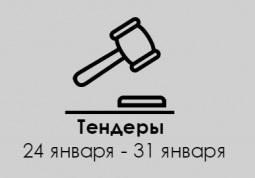 ТЕНДЕРЫ ПО ШТОРАМ. 24 января - 31 января