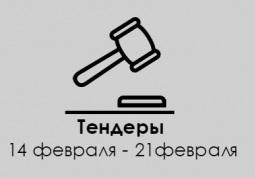 ТЕНДЕРЫ ПО ШТОРАМ. 14 феврая -21 февраля